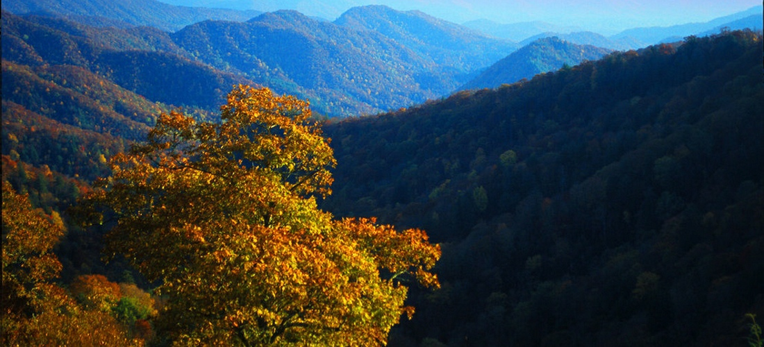 The beautiful colors of fall in the mountains of Western North Carolina.
